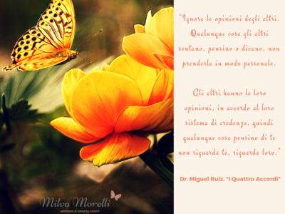 Frase (1)